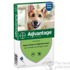 ADVANTAGE 400 CHIEN > 25 KG  4x 4ML